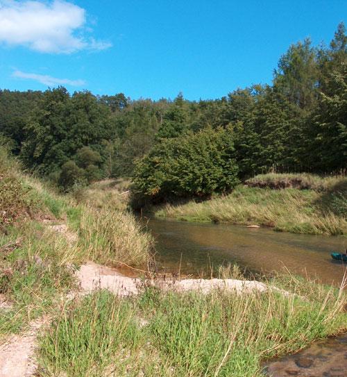 bober-auwald-im-unterlauf