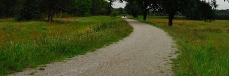 spreeradweg-bei-cottbus